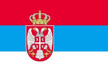 スロバキア国旗レンタルなら東京 大阪 全国イベント21へ!