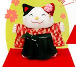 Japanese Wish Cat