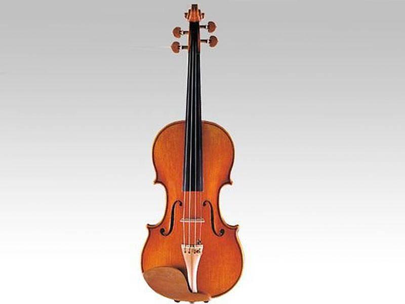 バイオリン レンタル