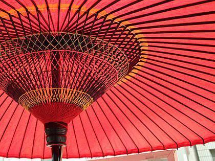 大名傘 イメージ